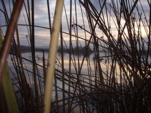 Hilltop Lake 2007 007